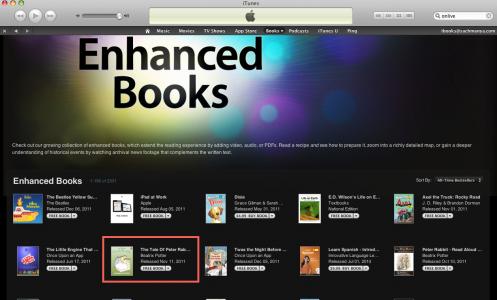 EnhancedBook-BestSeller012112